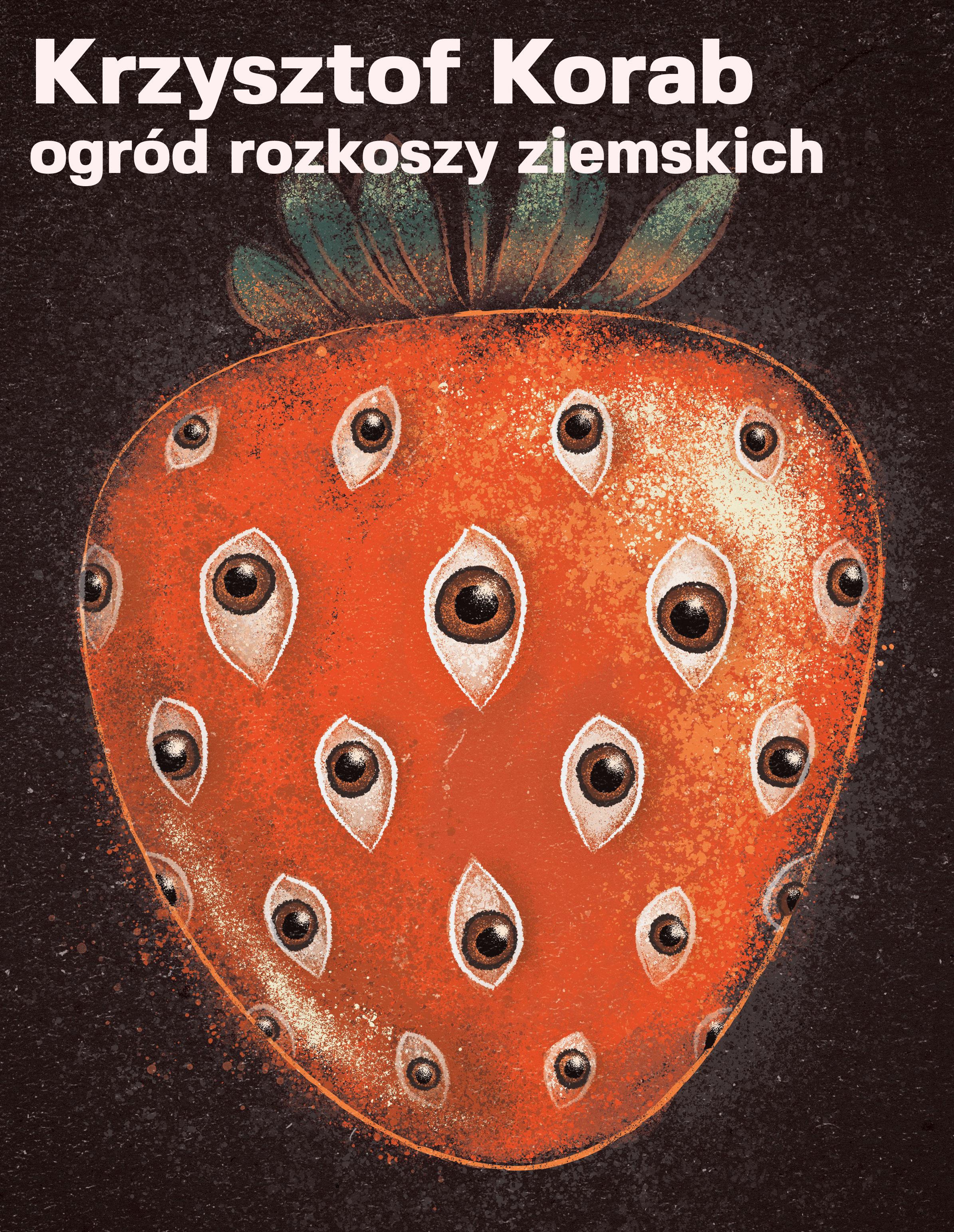 http://www.szarakamienica.pl/public/picture/ORZ_w2_2_demo1.jpg